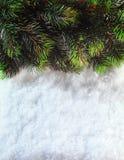 背景蓝色圣诞节云彩颜色构成包括的剥落梯度小山水平更低我的部分投资组合富有请看到剪影天空雪云杉正方形那里冠上结构树冬天 有杉树分支的圣诞节房客与在雪的锥体 寒假概念 图库摄影