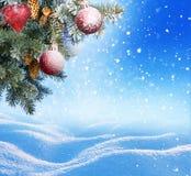 背景蓝色圣诞节云彩颜色构成包括的剥落梯度小山水平更低我的部分投资组合富有请看到剪影天空雪云杉正方形那里冠上结构树冬天 免版税库存图片