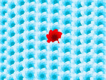 背景蓝色开花一个红色 免版税库存图片