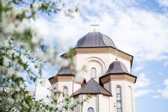 背景蓝色教会hdr天空 从底部的射击通过树 库存图片