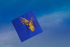 背景蓝色毕业帽子天空 库存图片