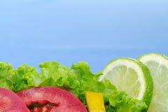 背景蓝色沙拉 免版税库存图片