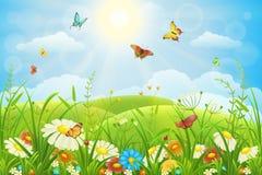 背景蓝色花卉草甸郁金香 库存图片