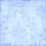 背景蓝色花卉 库存图片