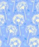 背景蓝色蒲公英模式中继器 库存图片