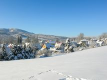 背景蓝色雪花白色冬天 冬天树的冷淡的分支反对蓝天的 森林冬天风景场面 冬天斯诺伊树梢  免版税库存图片