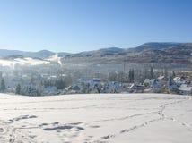 背景蓝色雪花白色冬天 冬天树的冷淡的分支反对蓝天的 森林冬天风景场面 冬天斯诺伊树梢  库存图片