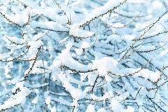 背景蓝色雪花白色冬天 库存照片