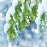 背景蓝色雪花白色冬天 免版税库存照片