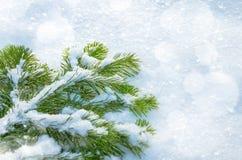 背景蓝色雪花白色冬天 库存图片