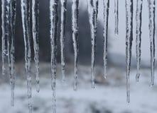 背景蓝色雪花白色冬天 图库摄影
