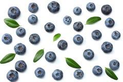 背景蓝莓查出白色 顶视图 库存图片