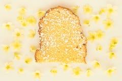 背景蛋糕查出的海绵白色 免版税图库摄影