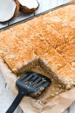 背景蛋糕椰子完全地被装载的图象 库存图片