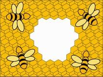 背景蜂黄色 免版税库存图片