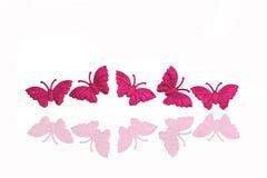 背景蝴蝶 库存照片