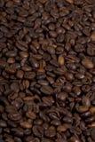 背景袋子咖啡庄稼充分查出的白色 免版税库存照片