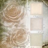 背景被构造的grunge玫瑰 库存图片