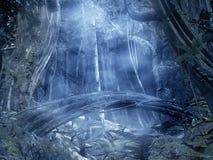 背景被迷惑的森林 免版税图库摄影