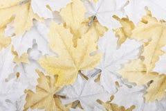 背景装饰叶子 免版税图库摄影
