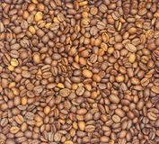 背景许多咖啡豆是褐色并且有宜人的芳香 免版税图库摄影