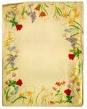 背景设计花卉样式葡萄酒 免版税库存图片