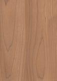 背景谷物纹理木头 免版税库存图片