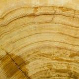 背景谷物纹理木头 库存照片