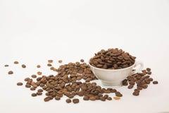 背景豆咖啡查出的射击工作室白色 库存照片