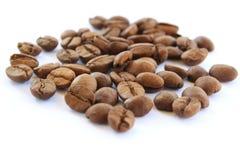 背景豆咖啡白色 库存照片
