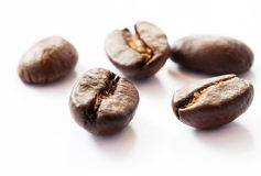 背景豆咖啡白色 免版税库存图片