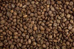 背景豆美好的咖啡烹调相关纹理 库存照片