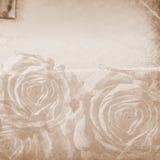 背景资料减速火箭的玫瑰 库存照片