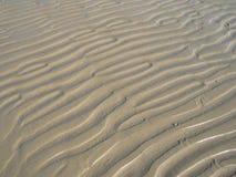 背景起波纹沙子 免版税图库摄影