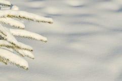 背景路雪冬天 免版税图库摄影