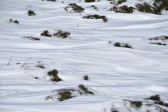 背景路雪冬天 免版税库存图片