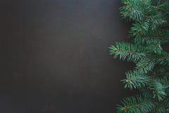 背景边界把空白圣诞节礼品金黄查出的丝带装箱 在黑暗的木背景的杉树分支 顶视图 复制空间 免版税库存照片
