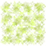 背景退了色绿色叶子 免版税图库摄影