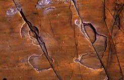 背景页岩 免版税库存图片