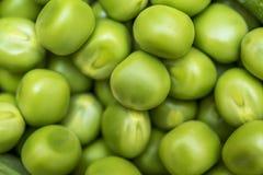 背景项目符号绿豆荚白色 绿色背景 豌豆背景 顶视图 图库摄影