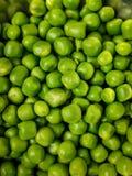 背景项目符号绿豆荚白色 免版税库存照片