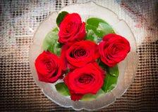 背景颜色绘画玫瑰花瓶水白色 免版税库存图片