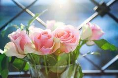 背景颜色绘画玫瑰花瓶水白色 库存照片