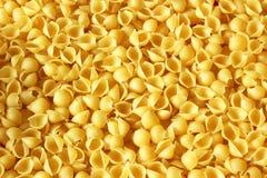 背景食物意大利面食系列壳 免版税图库摄影