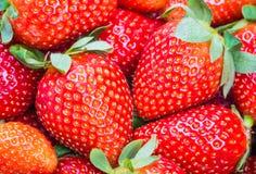 背景食物系列草莓 库存图片