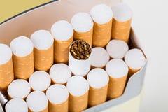 背景香烟查出的对象装箱白色 免版税库存照片