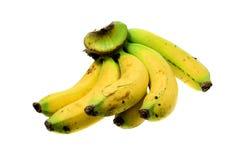 背景香蕉查出的白色 免版税库存照片