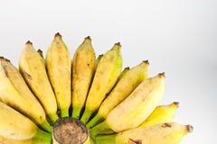 背景香蕉白色 库存照片