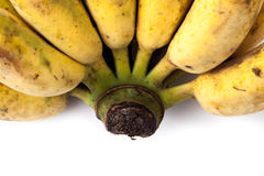 背景香蕉食物素食白色 免版税库存照片