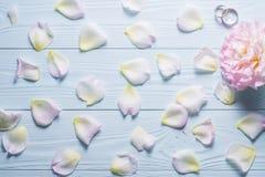 背景高雅重点邀请浪漫符号温暖的婚礼 8个看板卡eps文件招呼的包括的模板 在woode的玫瑰花瓣 免版税库存图片